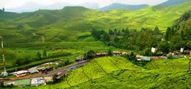 Tempat Wisata Bogor Terbaik Geo Adventure Indonesia Marcopolo Kab