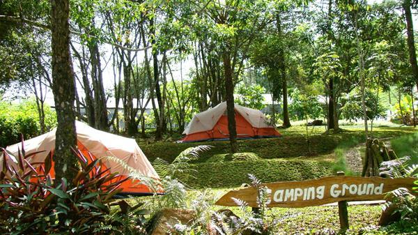 10 Rekomendasi Tempat Camping Bogor Asyik Melrimba Garden Salah Satu