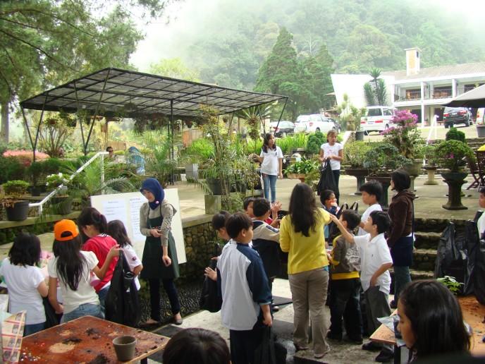 15 Tempat Wisata Puncak Bogor Sekitarnya Melrimba Garden Kab