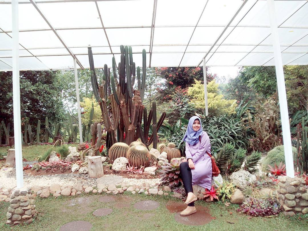 40 Tempat Wisata Bogor Lengkap Alamat Fotonya Bersantai Melrimba Garden