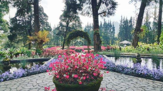 5 Tempat Camping Anti Mainstream Bogor Melrimba Garden Image Credit