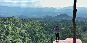 Lokasi Rute Melrimba Garden Bogor Tempat Hits Berlibur Menuju Ranggon