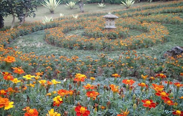 Lokasi Rute Wisata Melrimba Garden Bogor Daerah Hits Daftar Tempat