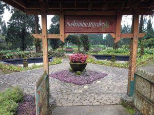 Melrimba Garden Tempat Eksotik Puncak Gunung Hayukabogor Mari Berkunjung Sebuah