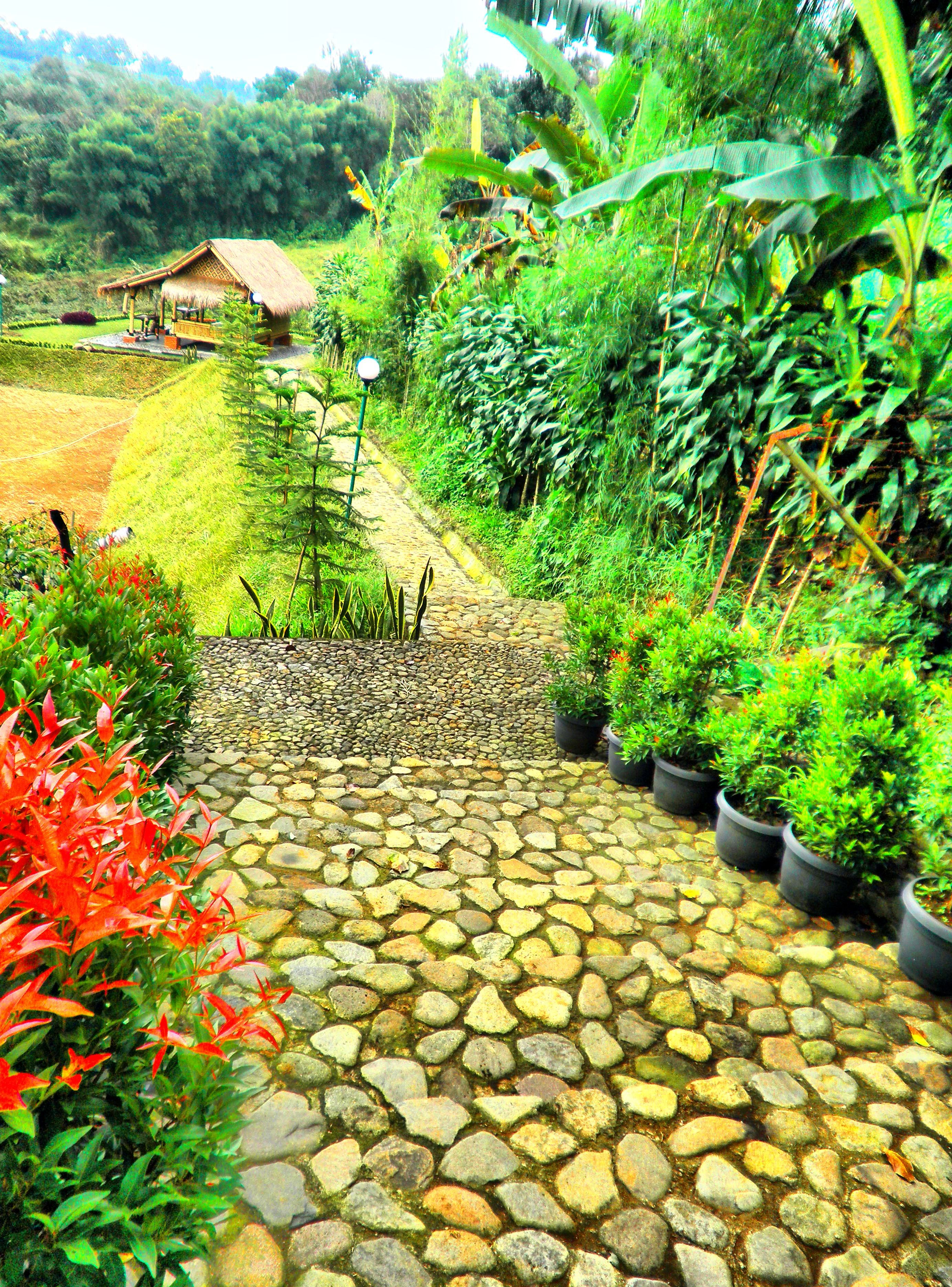 Saung Tales Terletak Dilereng Gunung Salak Pemandangan Bogor Melrimba Garden