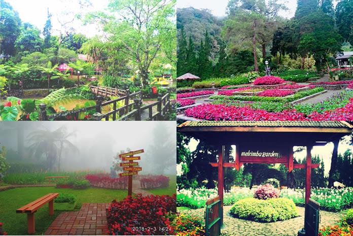 Tempat Wisata Romantis Murah Kota Bogor Melrimba Garden Puncak Kab