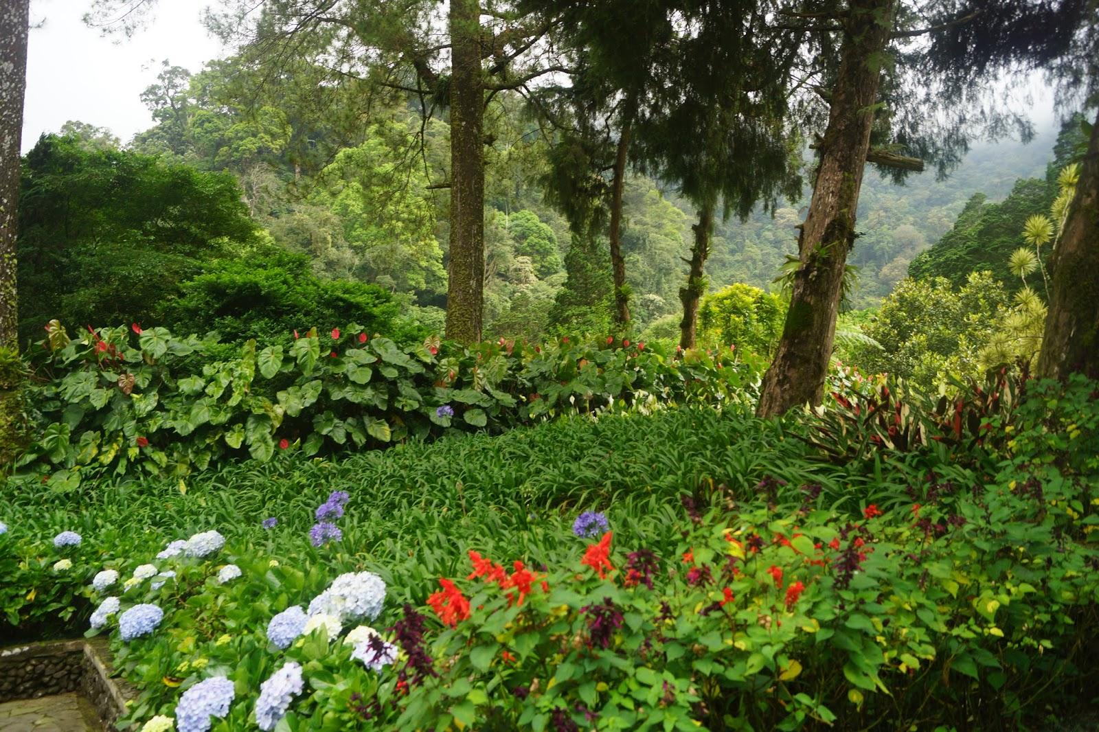 Traveling Forgot Melrimba Secret Garden Sebagai Family Park Keindahan Taman