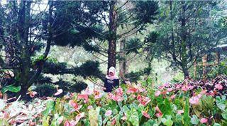 Visitbogor Instagram Tagged Deskgram Melrimba Garden Kab Bogor