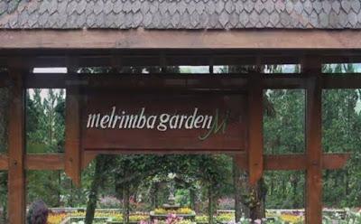 Wisata Favorit Indonesia Puncak Bogor Tempat Warga Jakarta Melrimba Garden