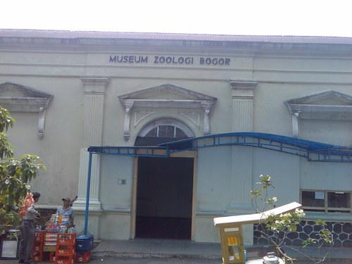Bogor 10 Museum Zoologi Pembela Tanah Air Kab