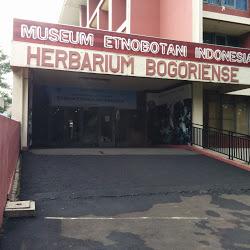 Anblog February 2016 Museum Etnobotani Awalnya Dicetuskan Oleh Prof Sarwono