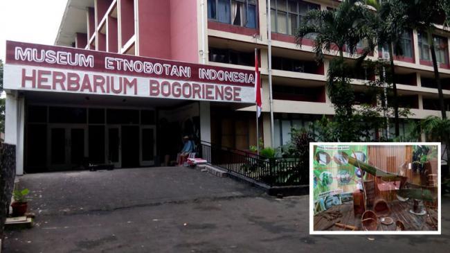 Bogor News Media Online Pemberitaan Publikasi Promosi 45museum Etnobotani Menjadi