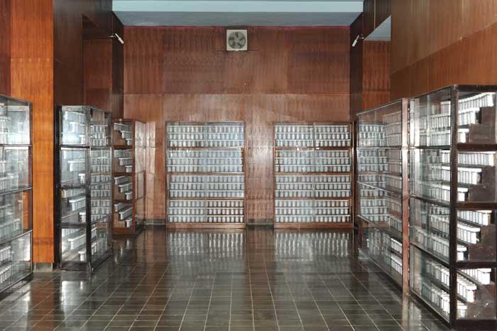Hotel Sekitar Daerah Museum Etnobotani Klikhotel Musium Kab Bogor