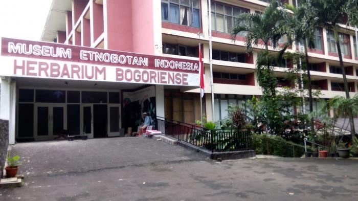 Museum Etnobotani Bogor Inilah Peninggalan Belanda Tribun Lingga Arvian Nugroho