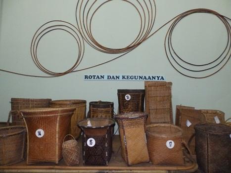 Museum Kota Bogor Tempat Wisata Musium Etnobotani Kab