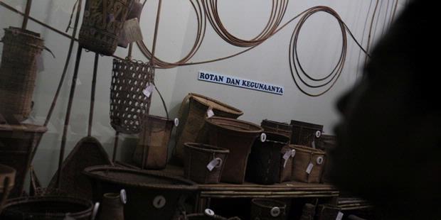 Yuk Museum Etnobotani Lembaga Ilmu Pengetahuan Indonesia Musium Kab Bogor