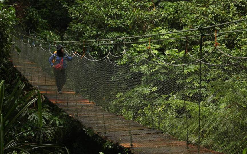 27 Tempat Wisata Bogor Favorit Hits Dikunjungi Alam Suaka Elang
