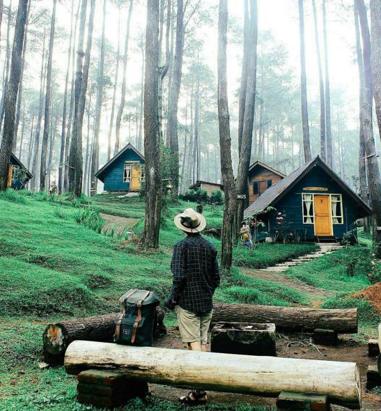 5 Wisata Hutan Pinus Instagramable Merahputih 0 Penangkaran Elang Loji