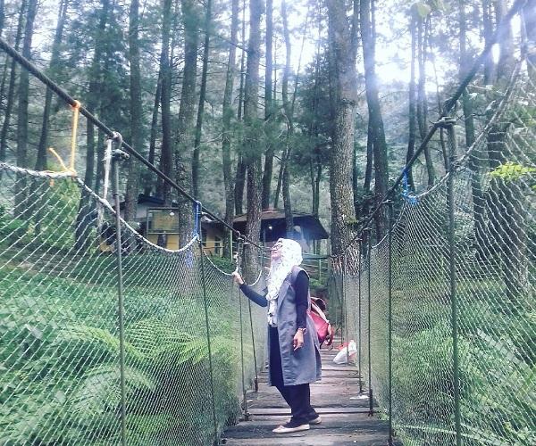 5 Wisata Hutan Pinus Instagramable Merahputih Bogor Mempunyai Tempat Unik