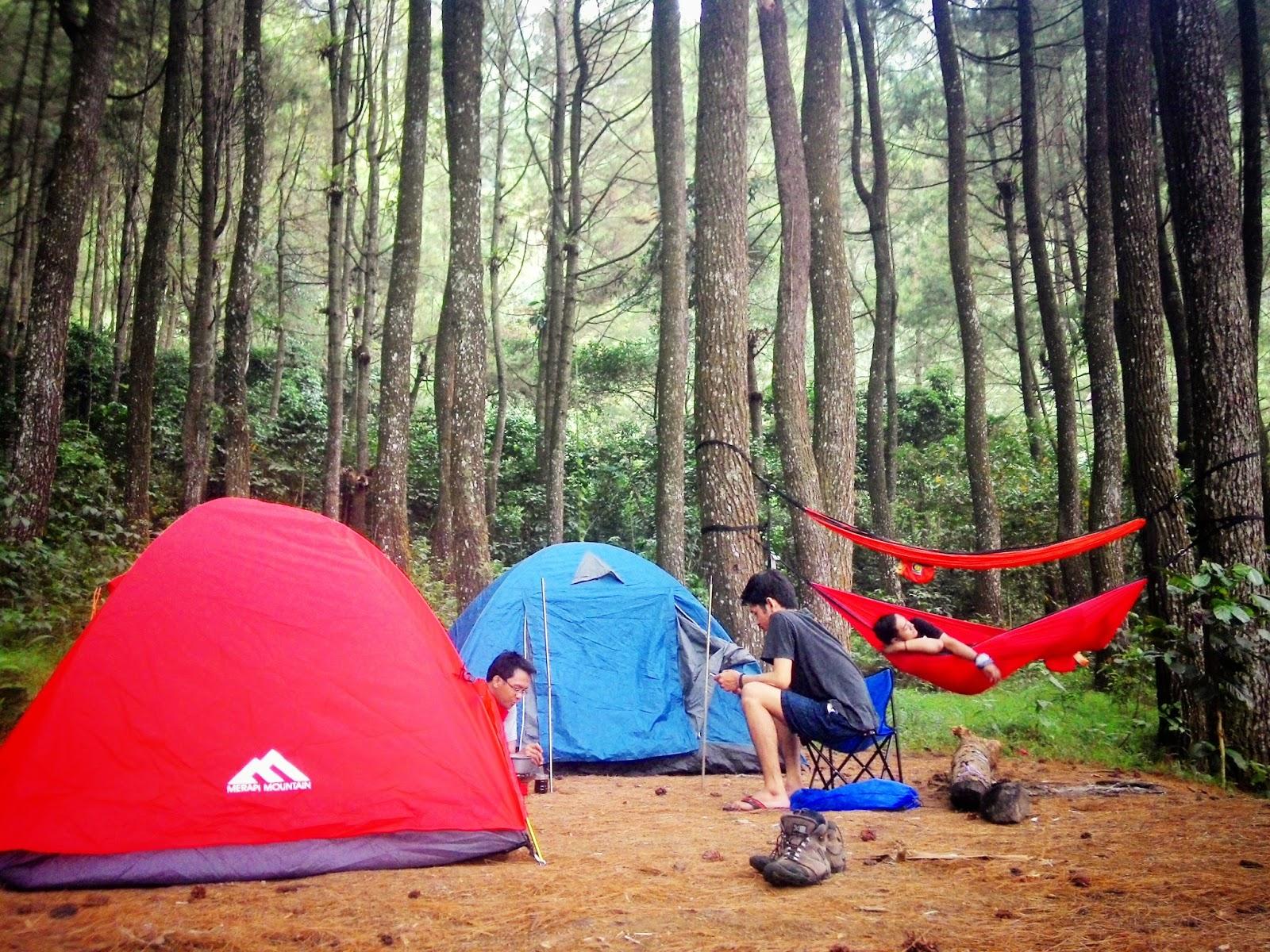 Cari Juli 2017 Tidak Camping Ground Hutan Pinus Loji Terdapat