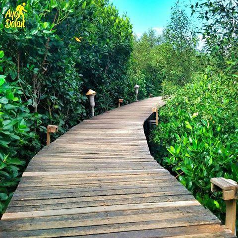 Indonesia Ayodolan Instagram Photos Videos Bjbr Bee Jay Bakau Resort