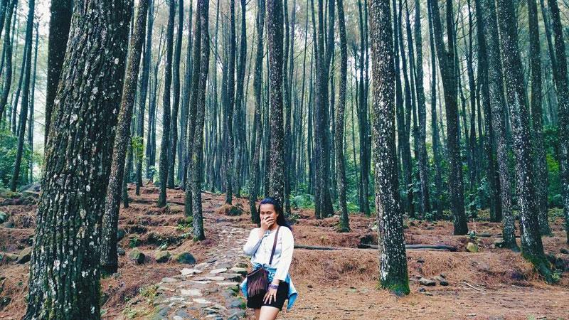 Inilah 20 Tempat Wisata Alam Instagrammable Bogor Tak Didukung Udara