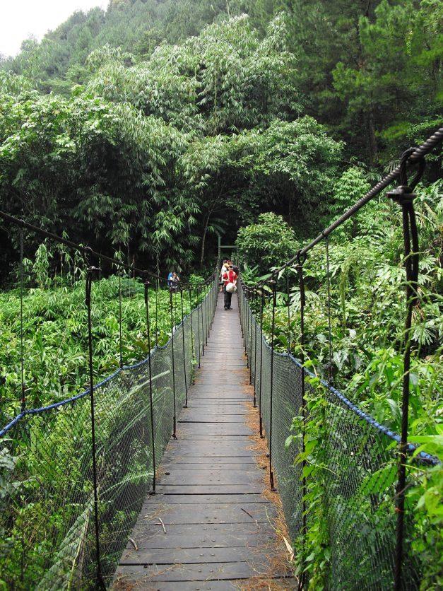 Lima Tempat Berkemah Kabupaten Bogor Menghabiskan Liburan Jembatan Suaka Elang
