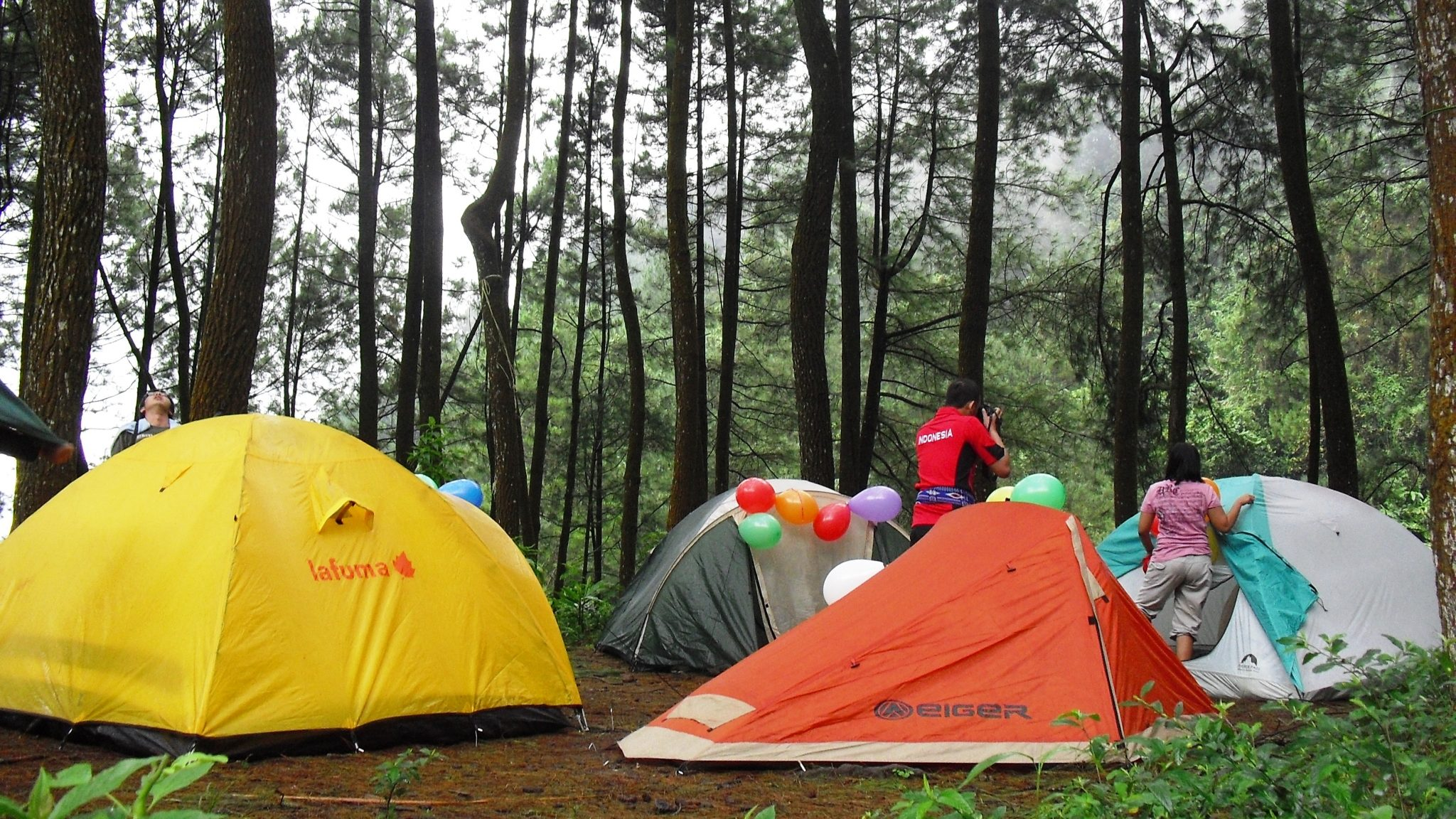Lima Tempat Berkemah Kabupaten Bogor Menghabiskan Liburan Menjalin Keakraban Penangkaran