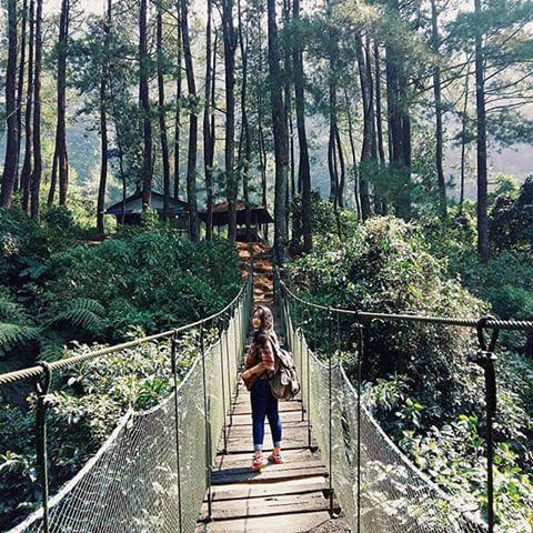 Visitbogor Instagram Photos Videos Selamat Hari Minggu Visitors Pagi Kita
