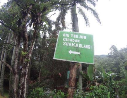 Wisata Suaka Elang Bogor Tempat Camping Kampung Loji Cigombong Rute