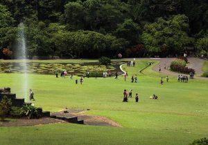 Penangkaran Rusa Giri Jaya Cariu Bogor Daftar Tempat Wisata Terbaru