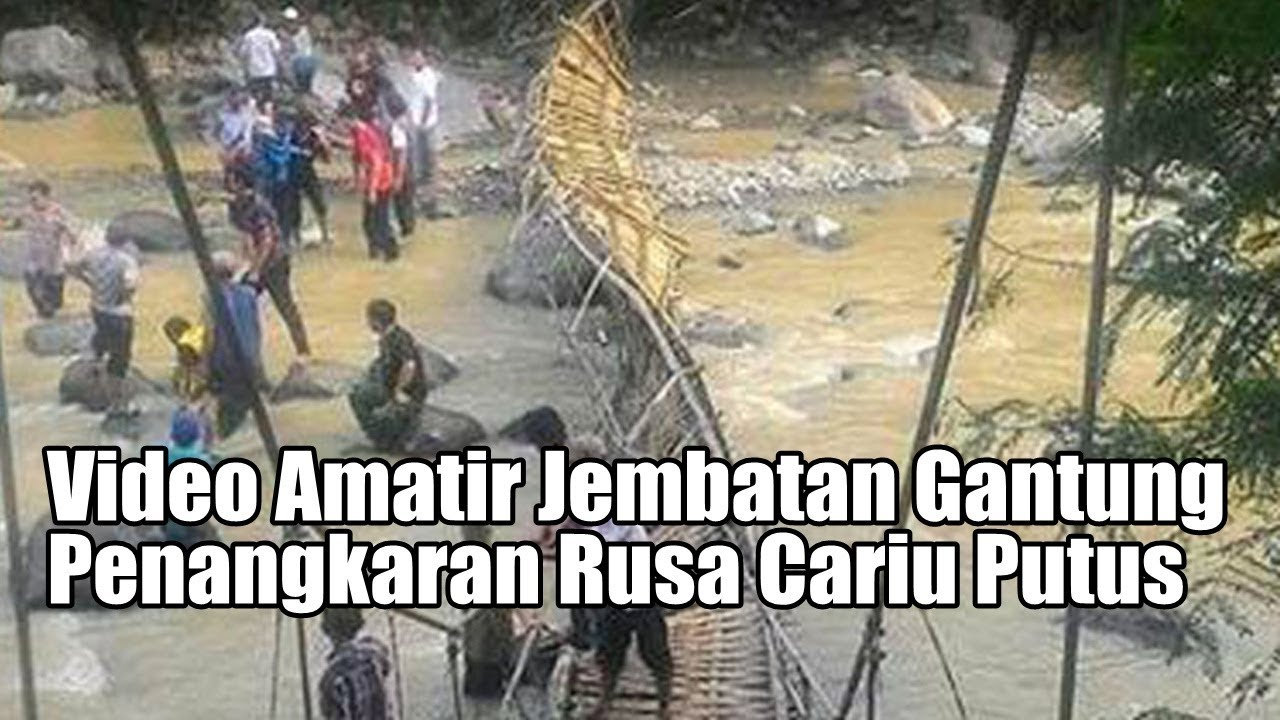Video Amatir Jembatan Gantung Penangkaran Rusa Cariu Bogor Putus Giri