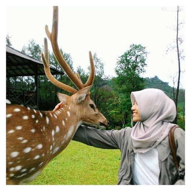 Wisata Bogor Buat Kalian Suka Hunting Nih Recommended Didukung Pemandangan