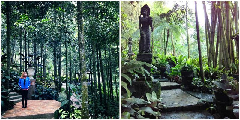 13 Hotel Indah Bogor Puncak Sensasi Menginap Tengah Menemukan Sebuah