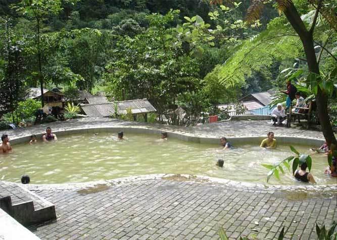 26 Jajaran Tempat Wisata Alam Bogor Wajib Dikunjungi Petualangan Hutan