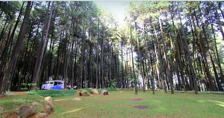 Bogor Aneka Wisata Indonesia Menyaksikan Panorama Alami Khas Hutan Lindung