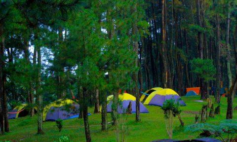 Jambore Wisata Ramah Halimun Salak Generasi Mendatang Tempat Camping Ground