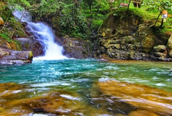 Tempat Wisata Keren Puncak Bogor Kis Madeofbits Petualangan Hutan Air