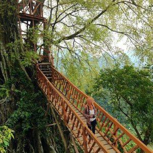 Tiket Masuk Rumah Pohon Jembatan Kayu Gantung Curug Ciherang
