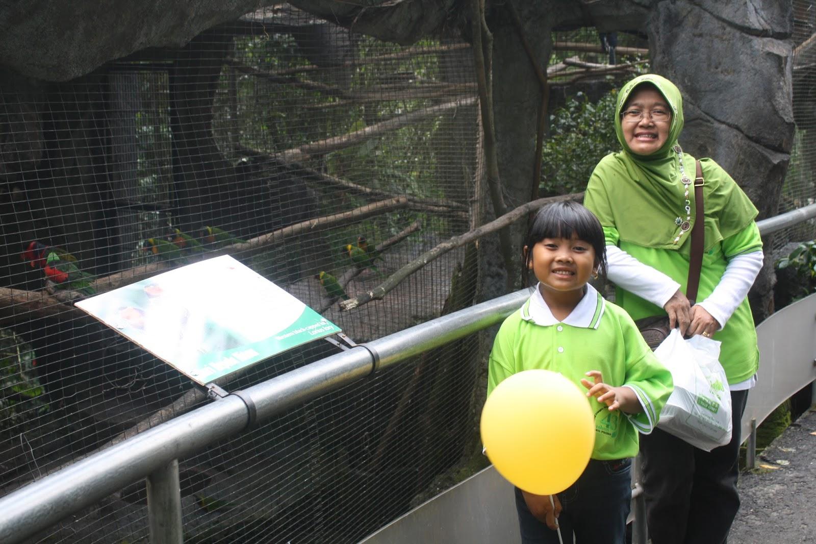 Jelajah Indonesia Taman Safari Bogor Terletak Desa Cibeureum Kecamatan Cisarua