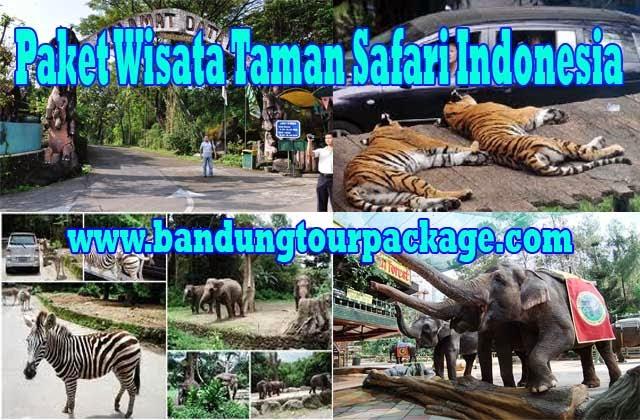 Paket Wisata Taman Safari Indonesia Bogor Yoshi Tour Kab