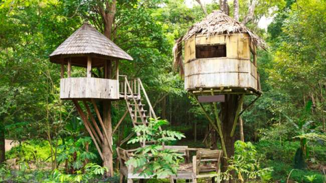 Sensasi Menginap Rumah Pohon Taman Safari Thetanjungpuratimes Indonesia Kab Bogor