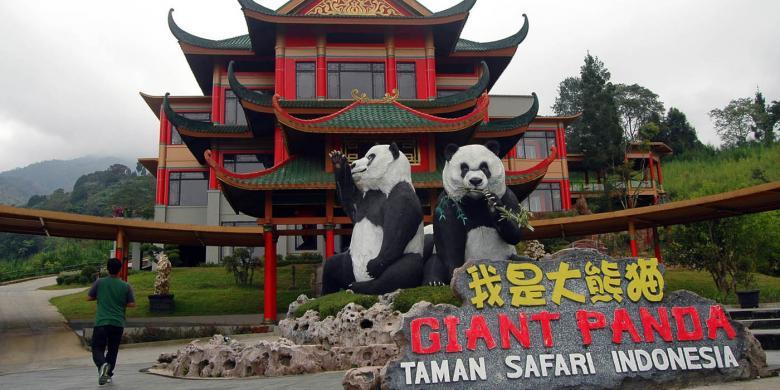 September 2016 Sepasang Giant Panda Jadi Penghuni Taman Safari Gedung