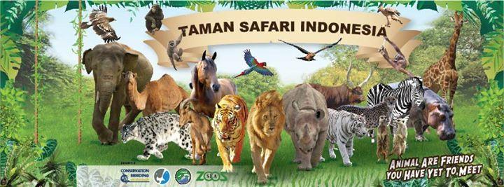 Taman Safari Bogor Indonesia Pinterest Kab
