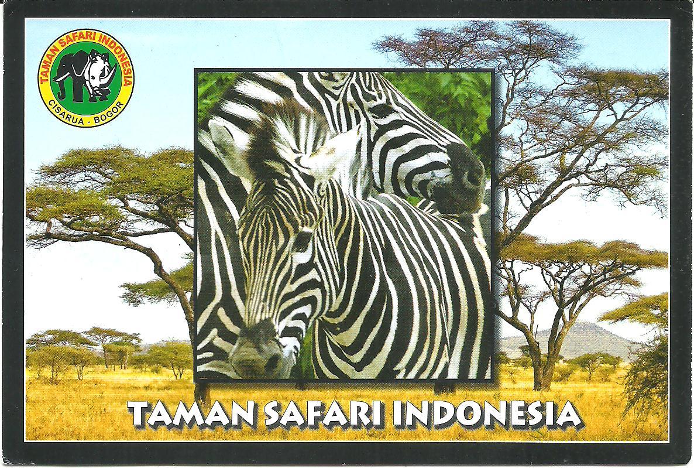Taman Safari Indonesia Cisarua Bogor Hqeem Stamps Kab