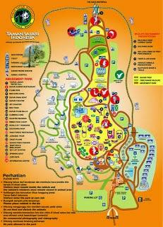 Taman Safari Indonesia Cisarua Bogor Tempat Wisata Terindah Kab