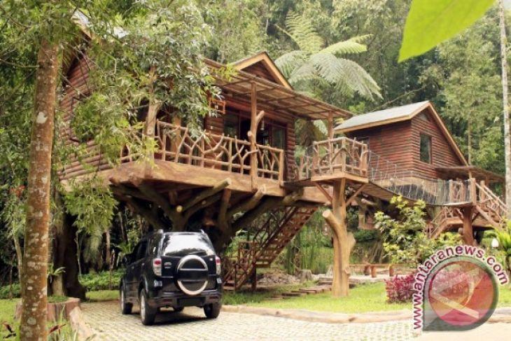 Taman Safari Indonesia Luncurkan Layanan Rumah Pohon Antara News Kab