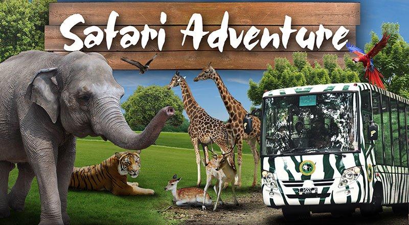 Taman Safari Indonesia Tsi Bogor Info Lengkap Edisi 2 Biasanya