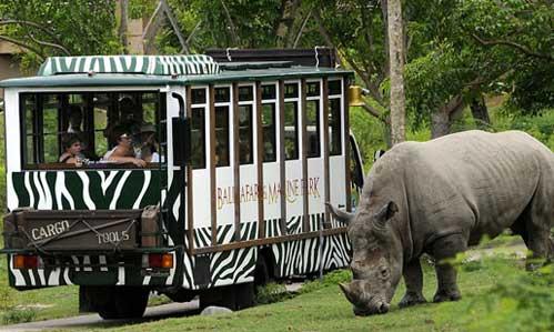 Taman Safari Indonesia Wisata Jawa Kab Bogor