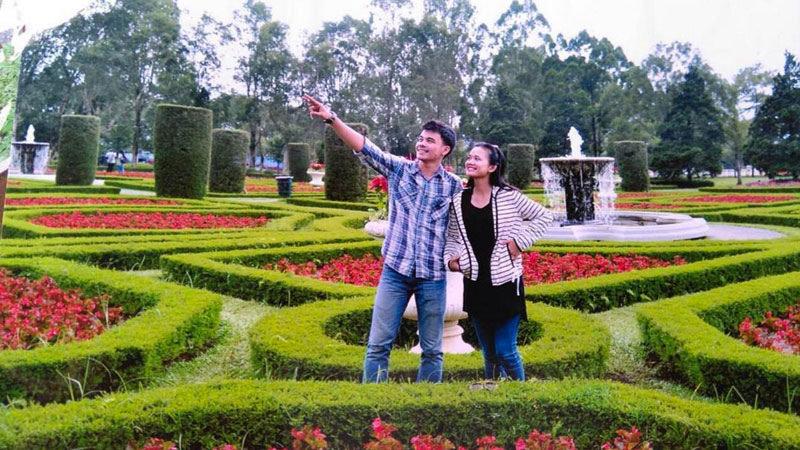 33 Extraordinary Bogor Puncak Knew Existed Dreamed Romantic Dream Floral